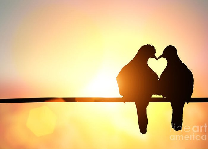 Lovebird Greeting Card featuring the photograph Silhouette Of Bird In Heart Shape On by Littleperfectstock
