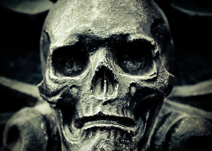 Gothic Style Greeting Card featuring the photograph Skull by Thepalmer