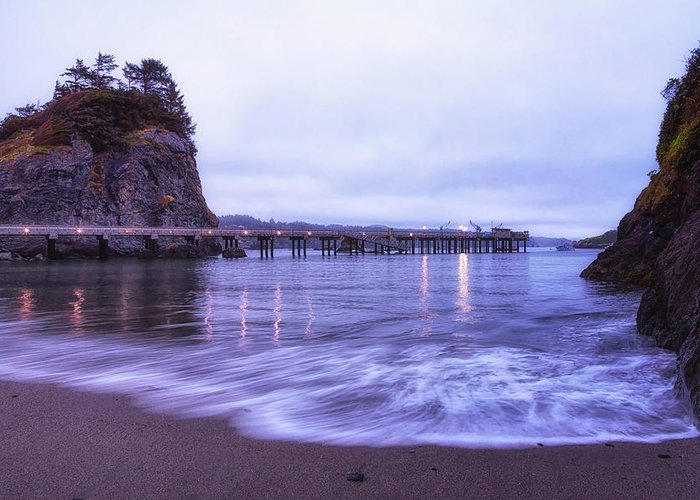 California Greeting Card featuring the photograph Soaking It All In by Marnie Patchett