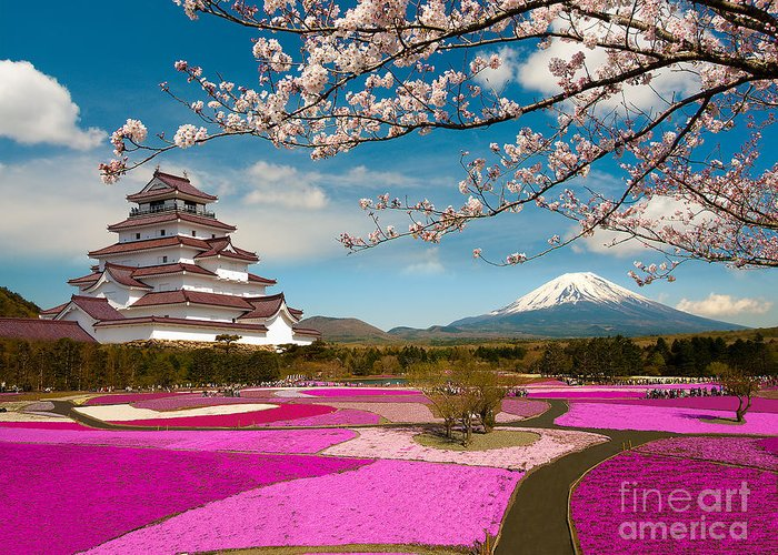 Chiba Greeting Card featuring the photograph Spring Season In Japan by Krishna.wu