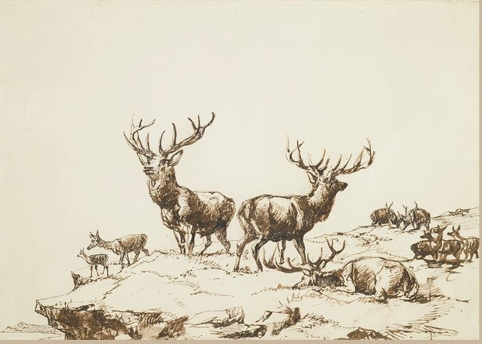 Sir Edwin Henry Landseer Greeting Card featuring the painting Stags And Hinds On A Mountain Side by MotionAge Designs