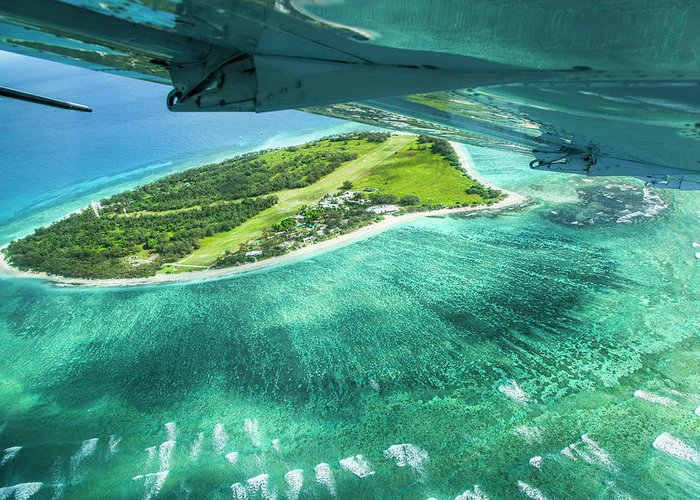 Grass Greeting Card featuring the photograph Taking Off From Great Barrier Reef by Nick