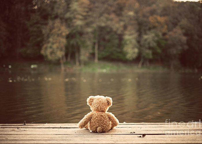 Gift Greeting Card featuring the photograph Teddy Bear by Creaturart Images