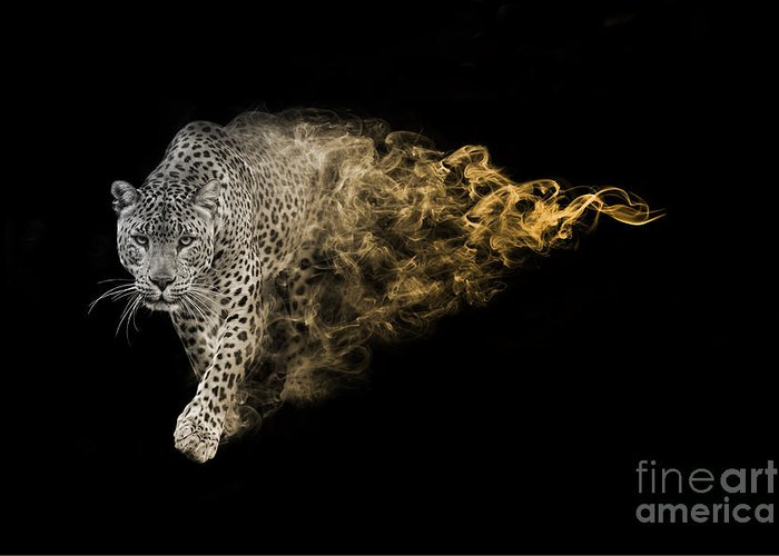 Big Greeting Card featuring the photograph The African Leopard Is One Of The Big by Effect Of Darkness