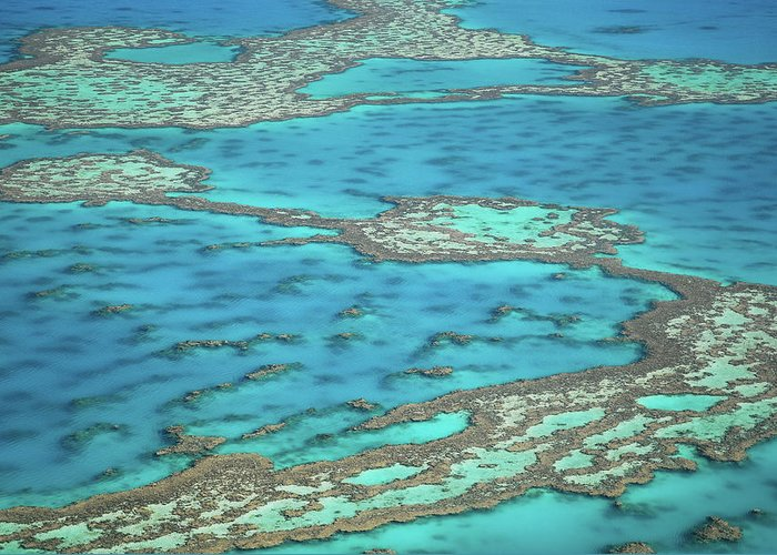 Scenics Greeting Card featuring the photograph The Big Reef, Whitsunday Islands by Chantal Ferraro