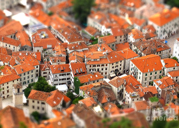 Small Greeting Card featuring the photograph Tilt-shift Miniature Effect Of Bird Eye by Katatonia82