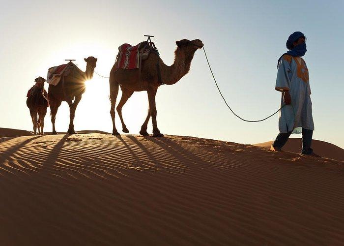 People Greeting Card featuring the photograph Tuareg Man & Camels, Erg Chebbi, Sahara by Peter Adams