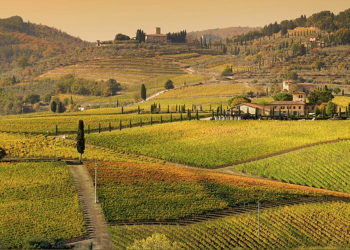 Scenics Greeting Card featuring the photograph Tuscany Farmhouse And Vineyard In Fall by Lisa-blue