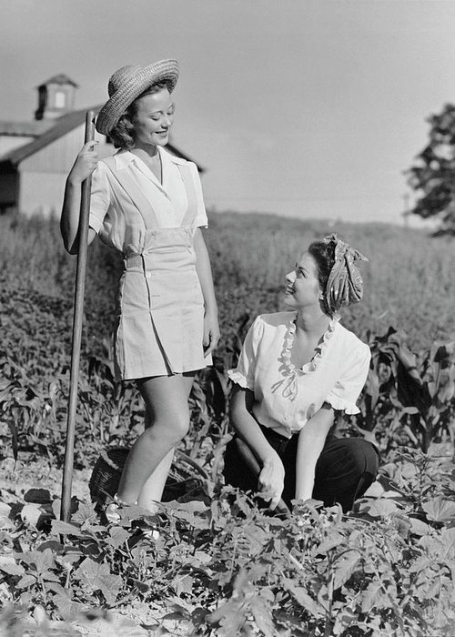 People Greeting Card featuring the photograph Two Women Gardening In Field by George Marks