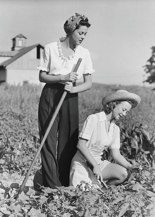Straw Hat Greeting Card featuring the photograph Two Women Working On Field, B&w by George Marks