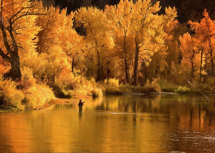 Orange Color Greeting Card featuring the photograph Usa, Idaho, Salmon River, Mature Man by Steve Bly