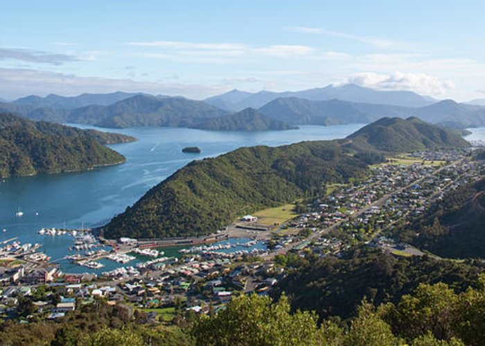 Queen Charlotte Sound Greeting Cards