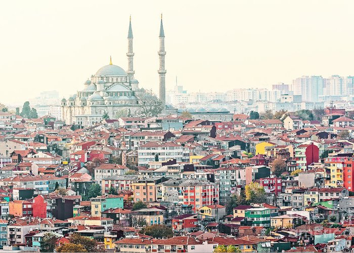 Crowd Greeting Card featuring the photograph View Over Istanbuls Dense Residential by Stefan Holm