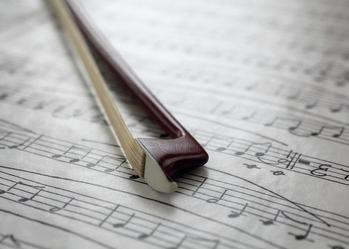 Sheet Music Greeting Card featuring the photograph Violin Bow On Music Sheet by Daniel Allan