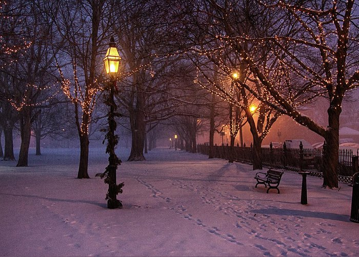 Salem Common Greeting Card featuring the digital art Walking The Path On Salem Ma Common by Jeff Folger