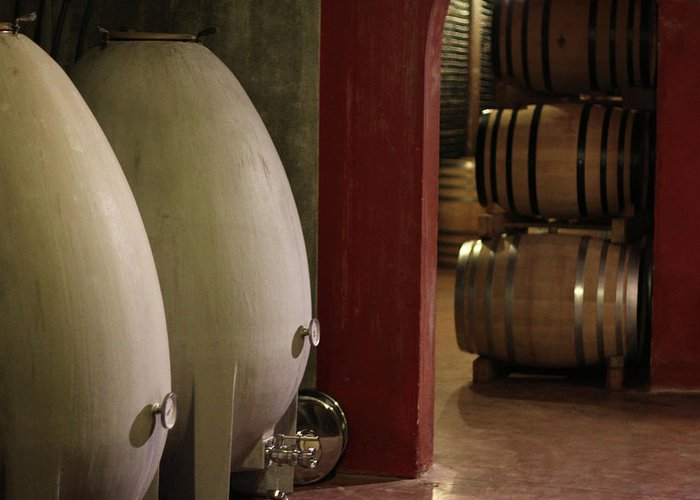 Aging Process Greeting Card featuring the photograph Wine Cellar by Tom And Steve