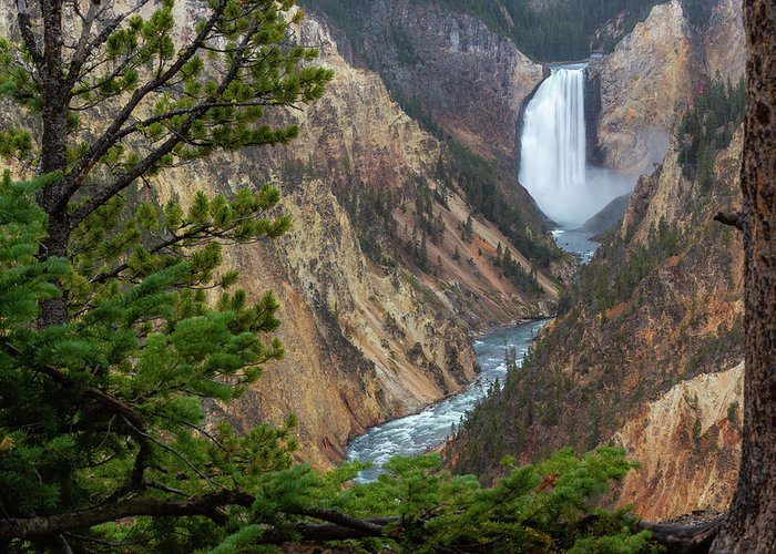 Yellowstone Greeting Card featuring the photograph Yellowstone Lower Falls by Stephen Stookey