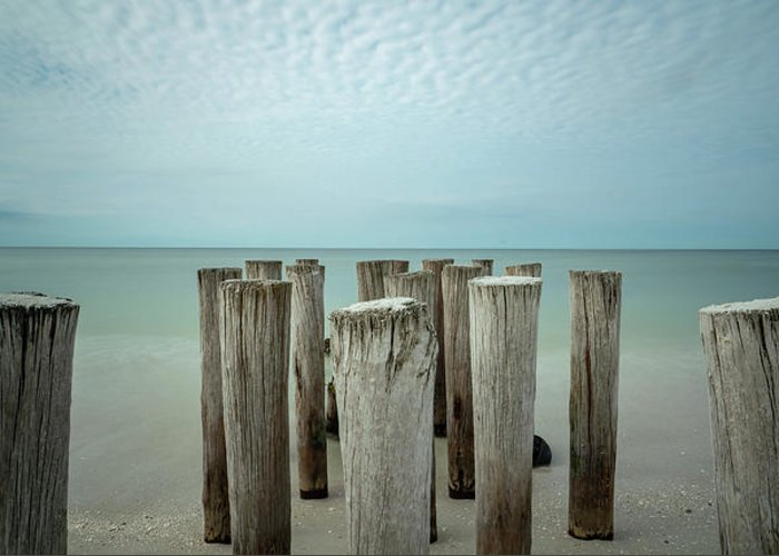 Naples Florida 2021 Greeting Card featuring the photograph Naples Pilings 2021 by Joey Waves