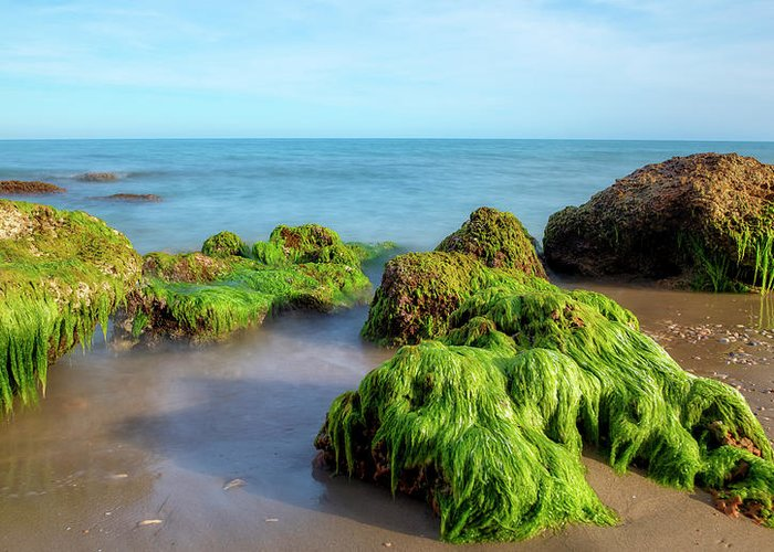 Lonely Greeting Card featuring the photograph The Coast Of Alcocebre On The Costa Azahar Coast Of Castellon by Vicen Photography