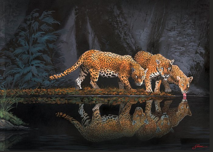 #leopards Greeting Card featuring the painting A Cool Drink by Harold Shull
