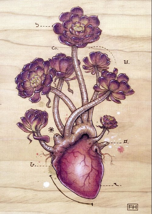 Pyrography Greeting Card featuring the pyrography Aeonium Heart by Fay Helfer