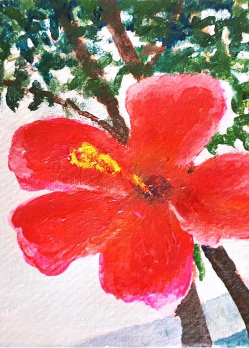 Flower Greeting Card featuring the painting Algarve Flower by Caroline Cunningham