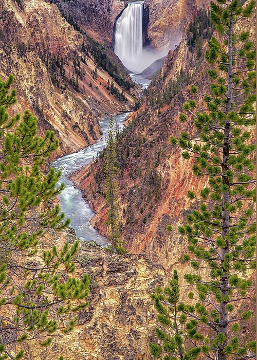 Yellowstone Greeting Card featuring the photograph Artist Point - Yellowstone National Park #2 by Stephen Stookey