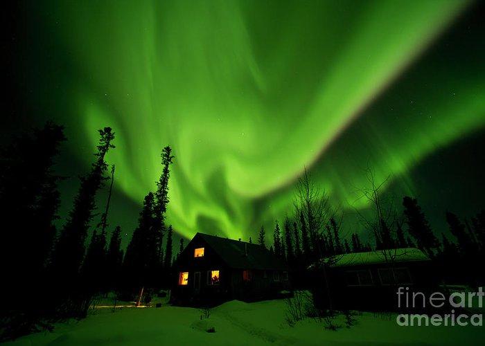00551581 Greeting Card featuring the photograph Aurora Borealis Alaska by Michael Quinton