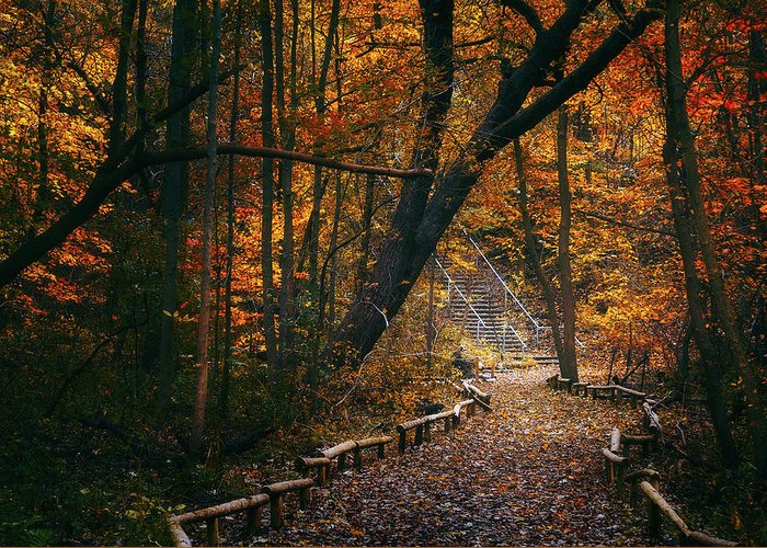 Designs Similar to Autumn In Riverside Park