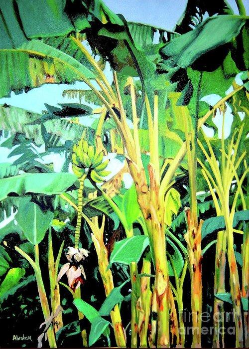 Banana Tree Greeting Card featuring the painting Banana tree by Jose Manuel Abraham