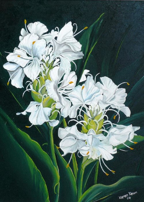 Caribbean Painting Butterfly Ginger Painting Floral Painting Botanical Painting Flower Painting Water Ginger Painting Or Water Ginger Tropical Lily Painting Original Oil Painting Trinidad And  Tobago Painting Tropical Painting Lily Painting White Flower Painting Greeting Card featuring the painting Butterfly Ginger by Karin Dawn Kelshall- Best