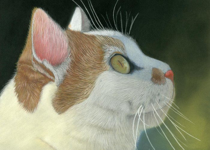 Cat Greeting Card featuring the pastel Cat Portrait Pastel Painting by Dave Nevue