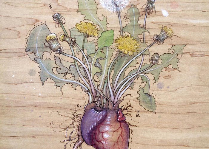 Dandelion Greeting Card featuring the pyrography Dandelion Heart by Fay Helfer
