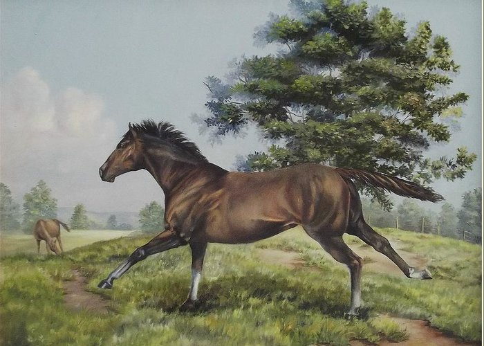 Horse In Field Greeting Card featuring the painting Energy To Burn by Wanda Dansereau