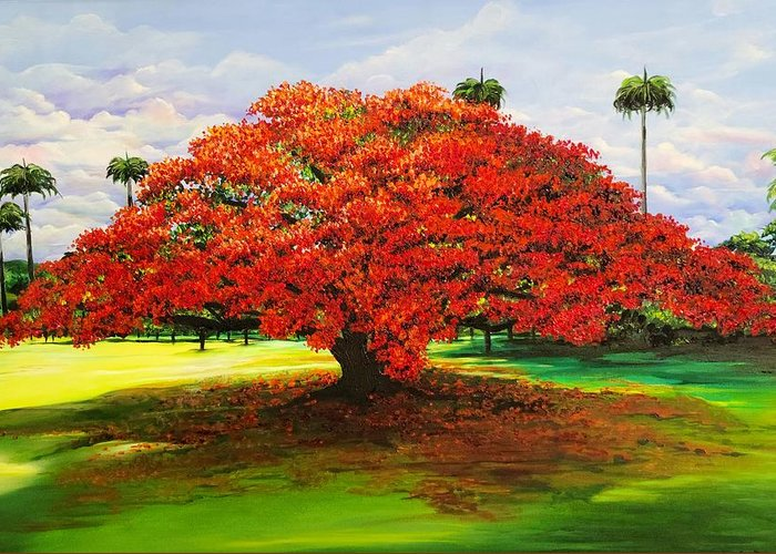 Flamboyant Tree Greeting Card featuring the painting Flamboyant Ablaze by Karin Dawn Kelshall- Best