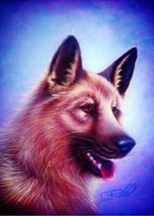 Whimsy Greeting Card featuring the painting German Shepard Portrait by L Risor
