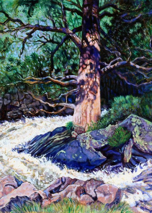 Old Pine Greeting Card featuring the painting Old Pine In Rushing Stream by John Lautermilch