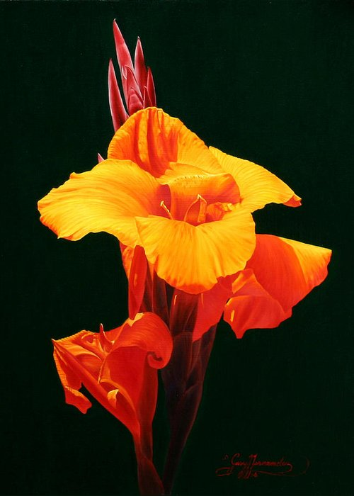 Floral Greeting Card featuring the painting Orange Canna by Gary Hernandez