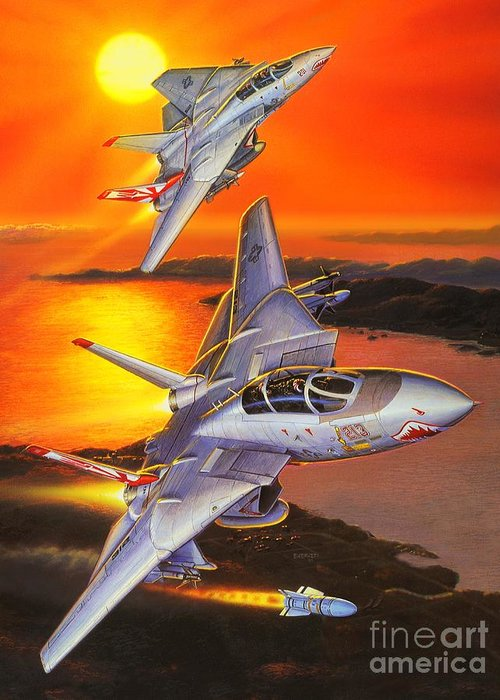 F-14 Tomcat Greeting Card featuring the painting Sundowner Tomcats by Stu Shepherd