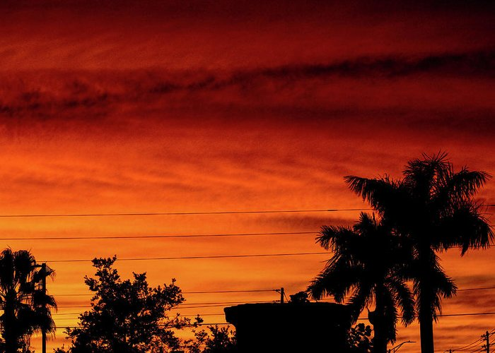 Sunset Greeting Card featuring the photograph The Fire sky by Daniel Cornell
