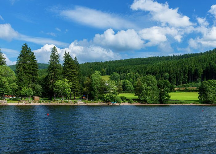 Color Greeting Card featuring the photograph Titisee Lake In The Black Forest by Vicen Photography