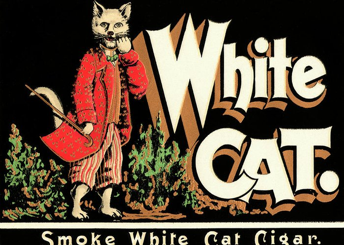 White Cat Brand Cigars Drawing By Vintage Cigar Posters