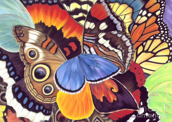 Butterflies Greeting Card featuring the painting Wings Of California by Lucy Arnold