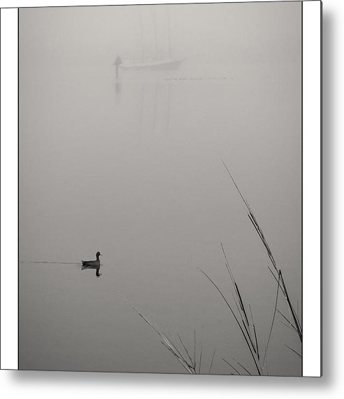 American Metal Print featuring the photograph Harbor Fog No.2 by Alan Sherlock