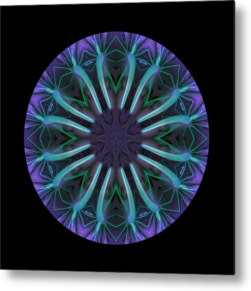 Mandala Metal Print featuring the photograph Reaching In by Ken Fields