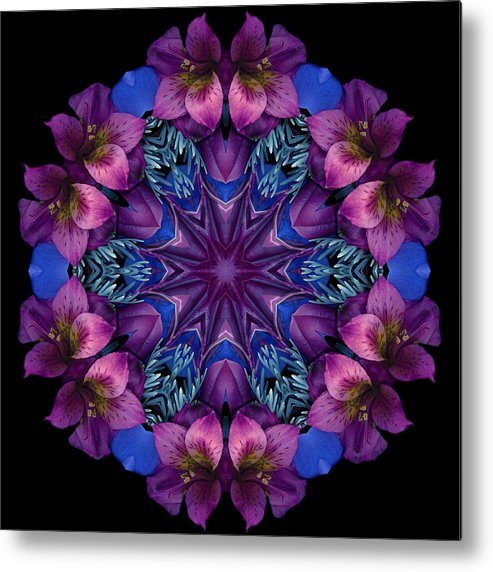 Mandala; Floral; Botanical; Scanner Photography; Scanograph;alstroemeria; ;magenta; Blue; Metal Print featuring the photograph Blue And Burgundy by Marsha Tudor