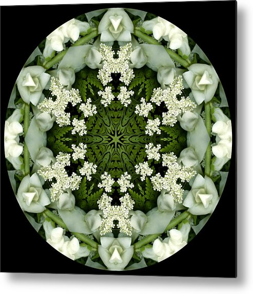 Mandala; Floral; Botanical; Scanner Photography; Scanography;snapdragons; Green; White; Leaves; Metal Print featuring the photograph Bride by Marsha Tudor