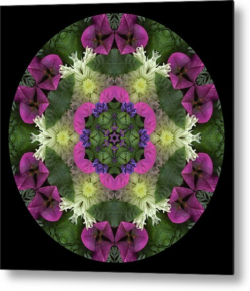 Mandala; Floral; Botanical; Scanner Photography; Scanography; Magenta; Pink; Green; Leaves Metal Print featuring the photograph Fringe With Pink by Marsha Tudor
