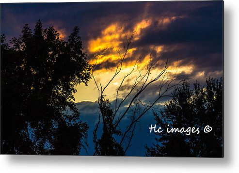 Sunset Metal Print featuring the photograph As Night Falls by Toni Lynn Cardoza