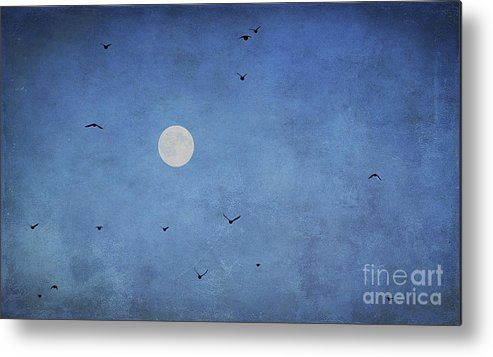 Abstract Metal Print featuring the photograph Fly Away by Darren Fisher